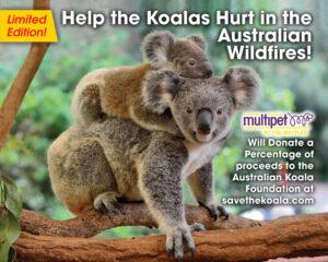 Koala Donation