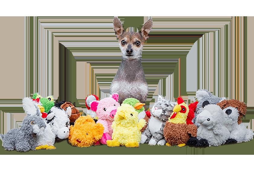 dog-toys-banner-img