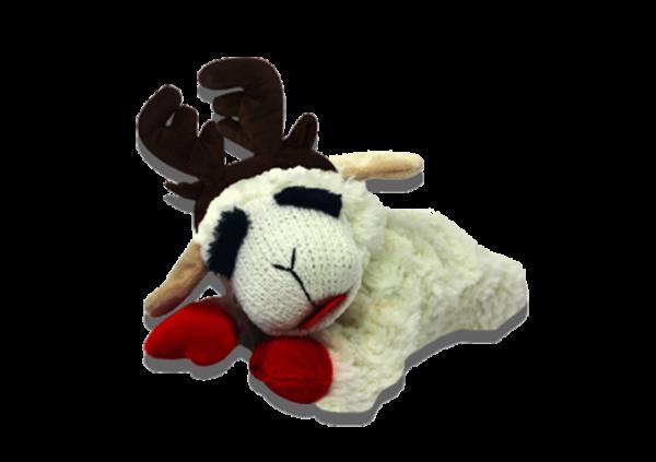 Laying Lamb Chop